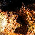 Grotta del Sangue - Palinuro